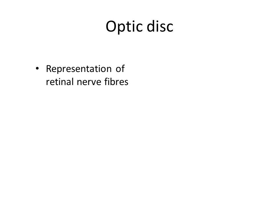 Optic disc Representation of retinal nerve fibres