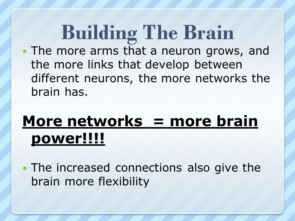 Building The Brain The more arms that a neuron grows, and the more links that develop between different neurons, the more networks the brain has. More