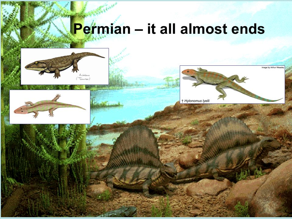Permian – it all almost ends