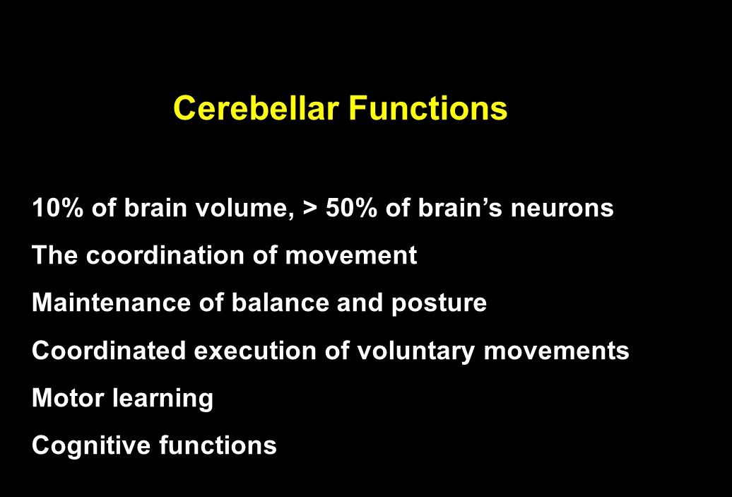 Cerebellar Functions 10% of brain volume, > 50% of brain's neurons The coordination of movement Maintenance of balance and posture Coordinated execution of voluntary movements Motor learning Cognitive functions