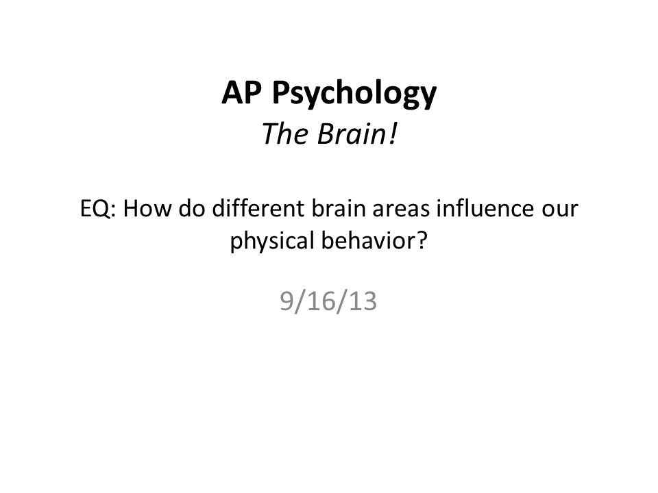 AP Psychology The Brain! EQ: How do different brain areas influence our physical behavior 9/16/13
