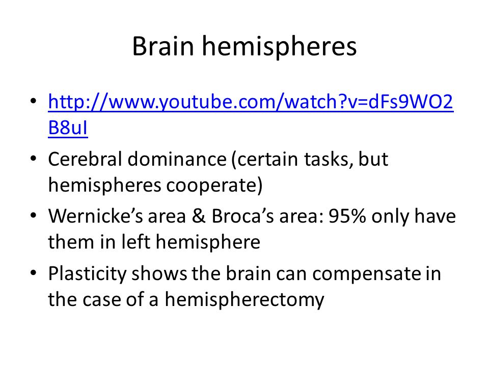 Brain hemispheres http://www.youtube.com/watch v=dFs9WO2 B8uI http://www.youtube.com/watch v=dFs9WO2 B8uI Cerebral dominance (certain tasks, but hemispheres cooperate) Wernicke's area & Broca's area: 95% only have them in left hemisphere Plasticity shows the brain can compensate in the case of a hemispherectomy