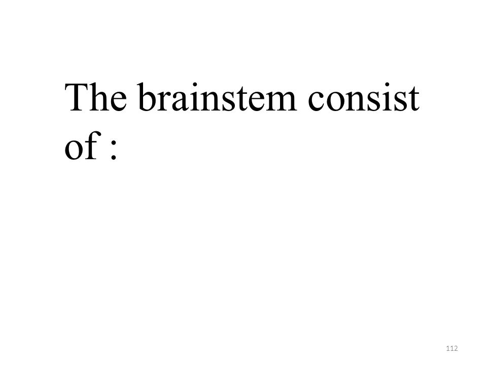 112 The brainstem consist of :