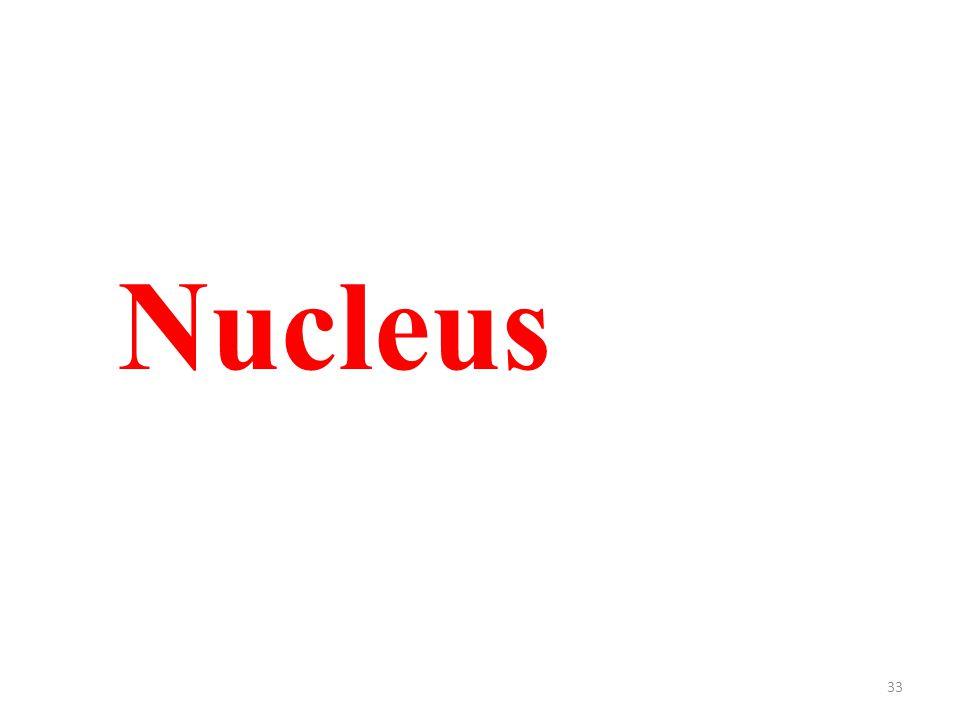 33 Nucleus