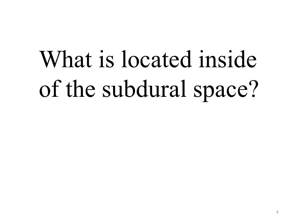 4 What is located inside of the subdural space?