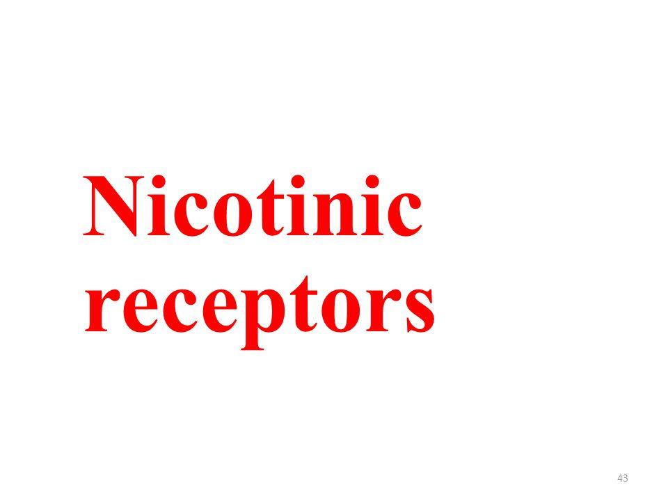 43 Nicotinic receptors
