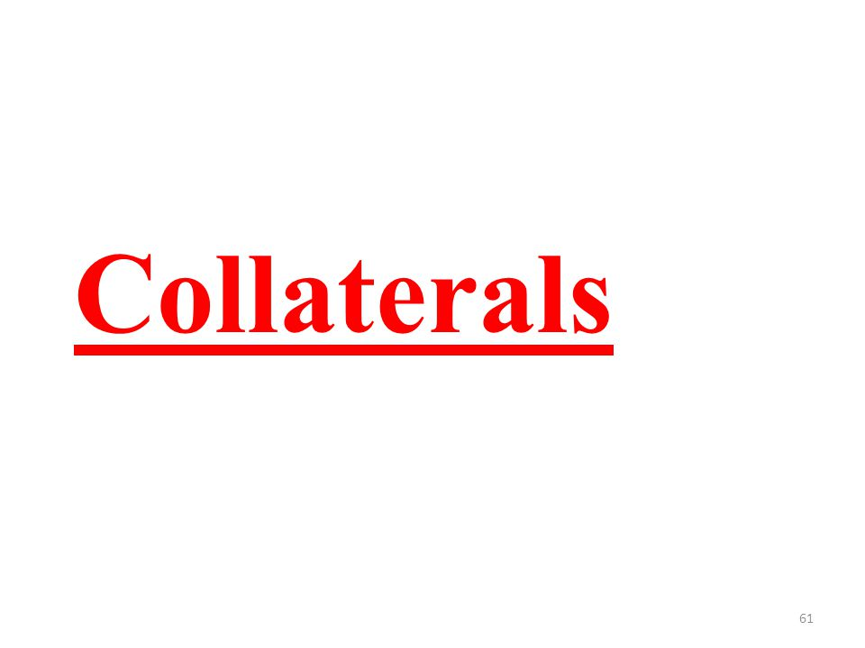 61 Collaterals