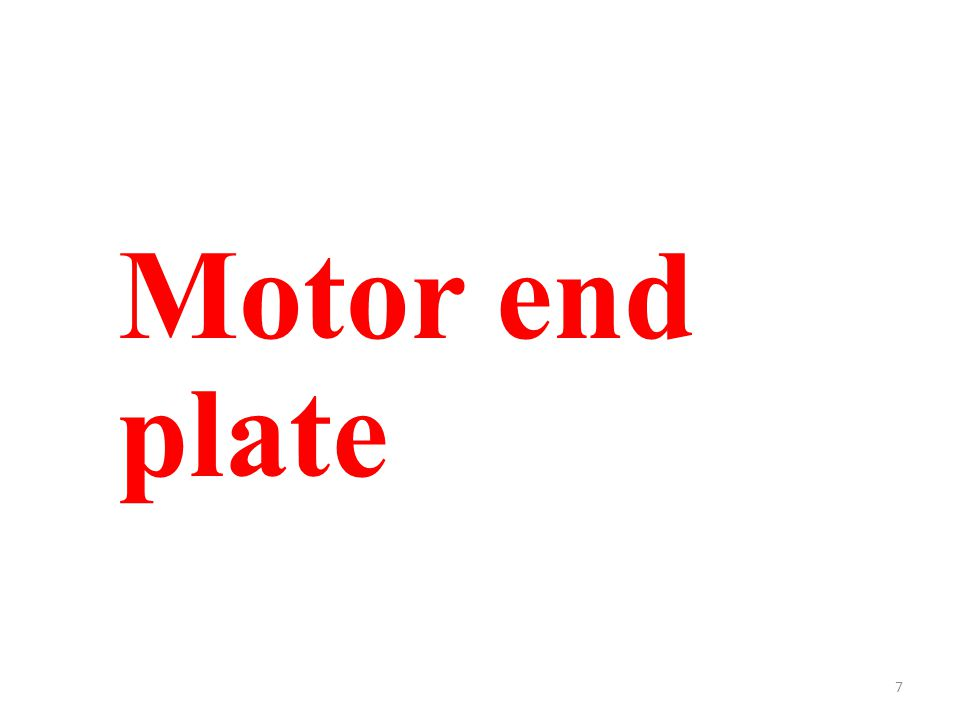 7 Motor end plate