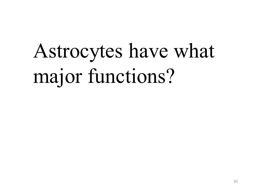 80 Astrocytes have what major functions?
