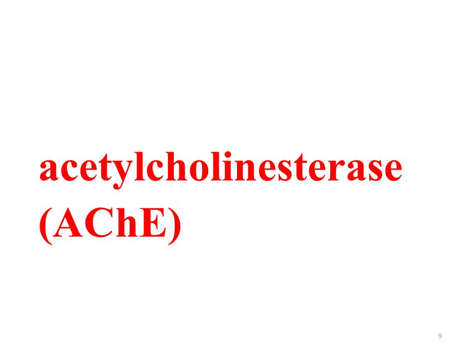 9 acetylcholinesterase (AChE)