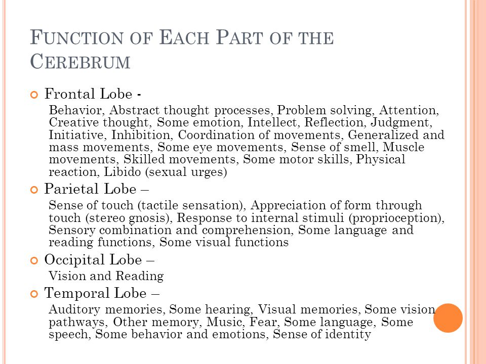 T HE N ERVOUS S YSTEM - N ERVES Function of the nerves - provide a common pathway for the electrochemical nerve impulses that are transmitted along each of the axons.