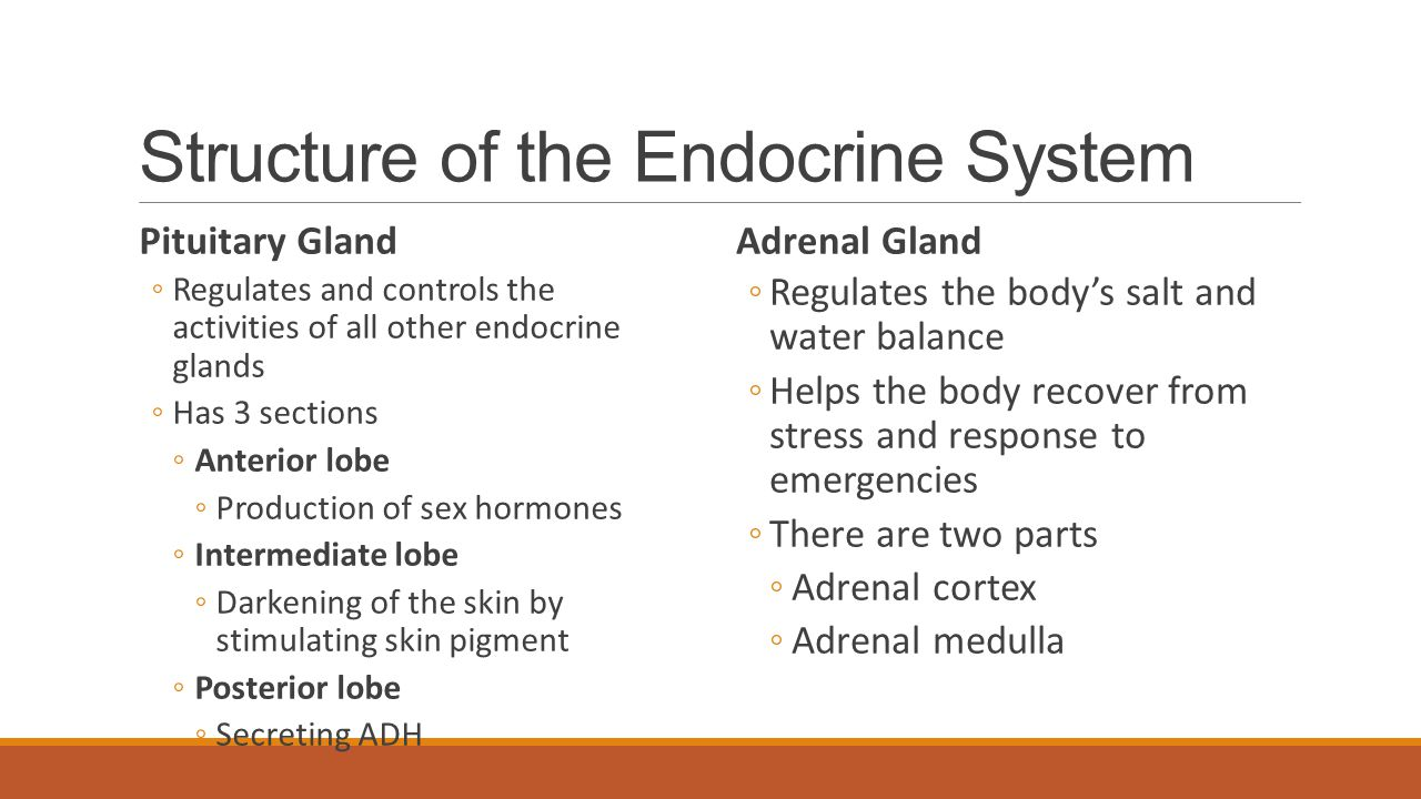 Problems of the Endocrine System Diabetes Mellitus ◦A disorder in which the pancreas produces too little or no insulin, resulting in high blood glucose levels Graves's Disease ◦also called hyperthyroidism, a disorder in which an overactive and enlarged thyroid glands produces excessive amounts of thyroxin.