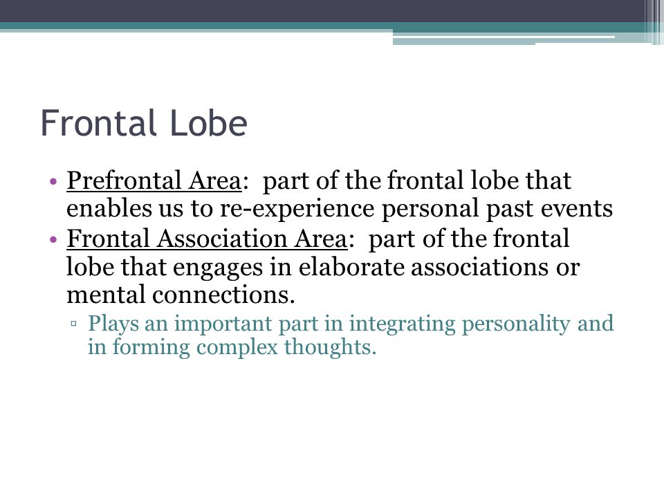 Frontal Lobe Prefrontal Area: part of the frontal lobe that enables us to re-experience personal past events Frontal Association Area: part of the fro