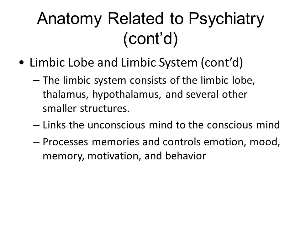 Anatomy Related to Psychiatry (cont'd) Limbic Lobe and Limbic System (cont'd) – The limbic system consists of the limbic lobe, thalamus, hypothalamus, and several other smaller structures.