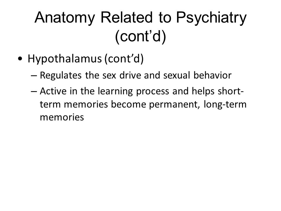 Anatomy Related to Psychiatry (cont'd) Hippocampus – An elongated structure with a head and a tail that is located in each temporal lobe – Tail of the hippocampus connects to the hypothalamus – Stores long-term memories and helps compare present and past emotions and experiences