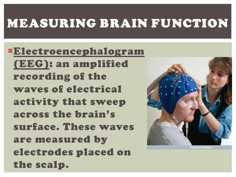  EEG – Wave cap; studies brain waves  PET – Inject glucose, track where it goes.