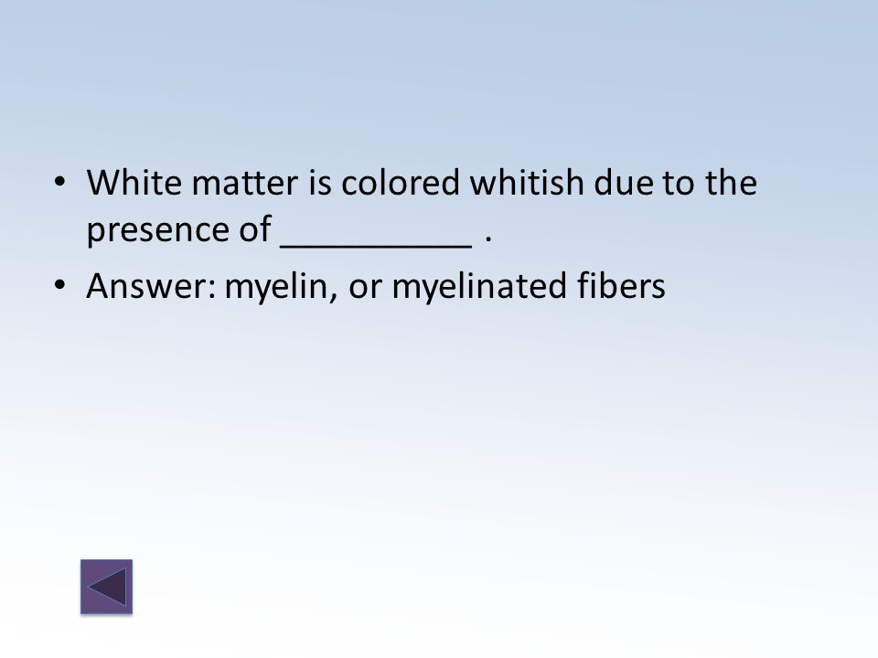 Answer: myelin, or myelinated fibers