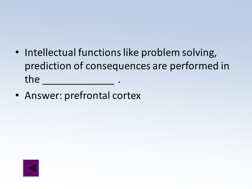 Answer: prefrontal cortex