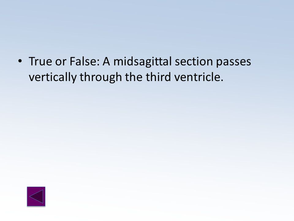True or False: A midsagittal section passes vertically through the third ventricle.