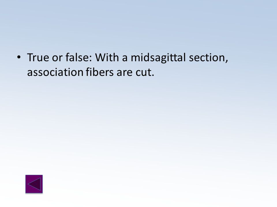 True or false: With a midsagittal section, association fibers are cut.