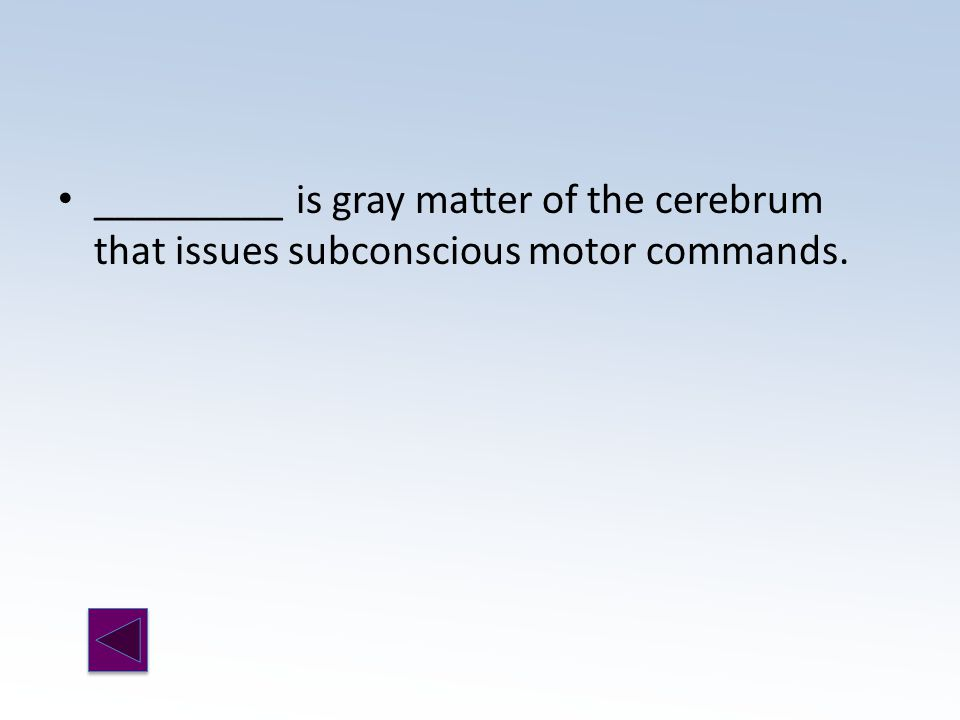 _________ is gray matter of the cerebrum that issues subconscious motor commands.