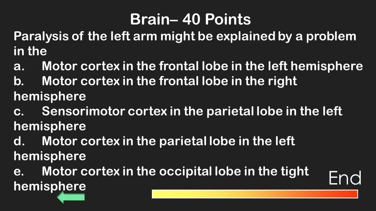 Brain– 30 Points Paul Broca found that the loss of ability to speak intelligibly is associated with damage to a region of the brain in the a.Thalmus b.Right parietal lobe c.Right occipital lobe d.Left temporal lobe e.Left frontal lobe End