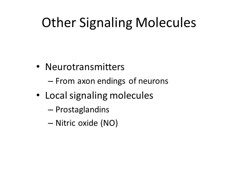 Other Signaling Molecules Neurotransmitters – From axon endings of neurons Local signaling molecules – Prostaglandins – Nitric oxide (NO)