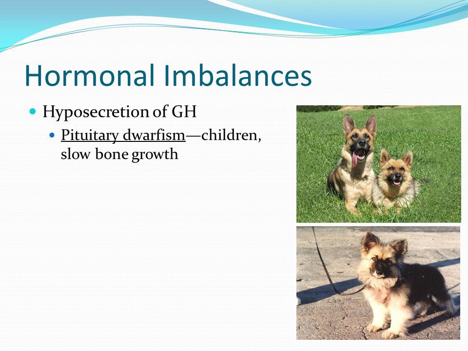 Hormonal Imbalances Hyposecretion of GH Pituitary dwarfism—children, slow bone growth
