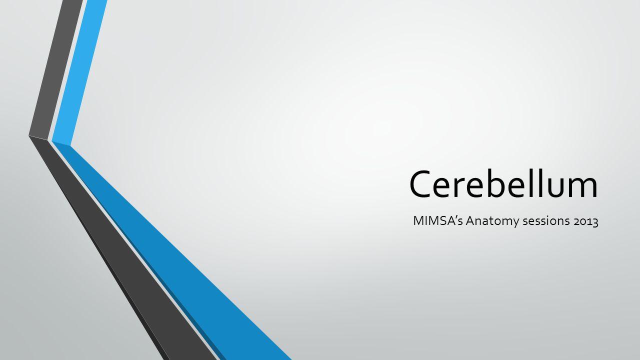 Cerebellum MIMSA's Anatomy sessions 2013