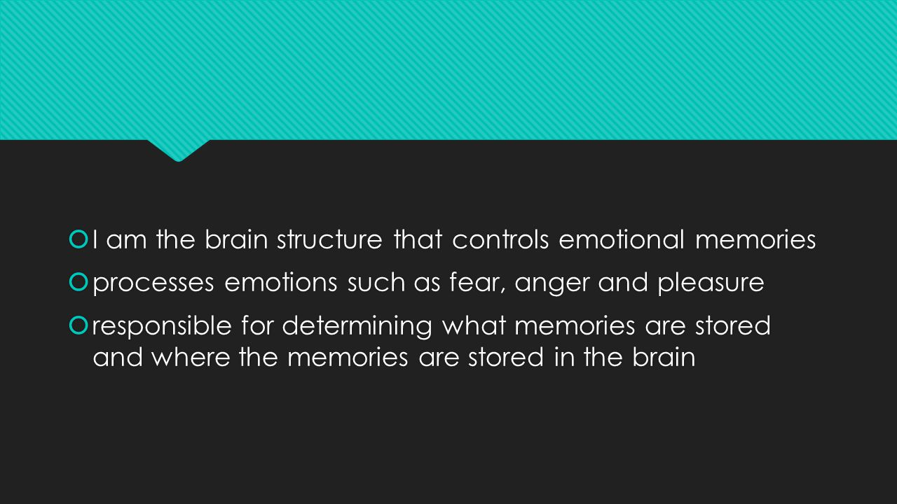  I am the brain structure that controls emotional memories  processes emotions such as fear, anger and pleasure  responsible for determining what memories are stored and where the memories are stored in the brain  I am the brain structure that controls emotional memories  processes emotions such as fear, anger and pleasure  responsible for determining what memories are stored and where the memories are stored in the brain