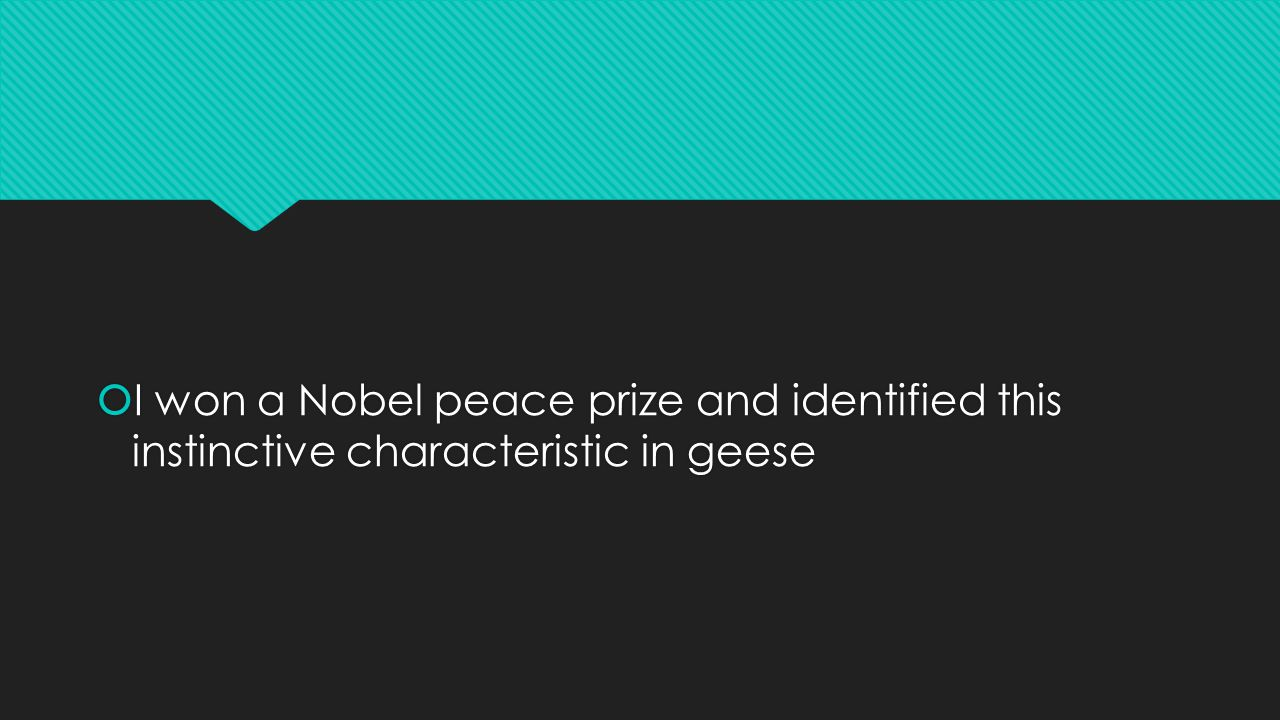  I won a Nobel peace prize and identified this instinctive characteristic in geese
