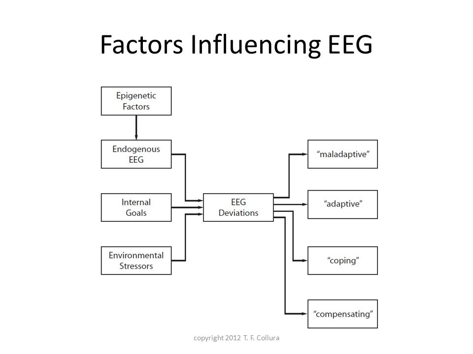 Factors Influencing EEG copyright 2012 T. F. Collura