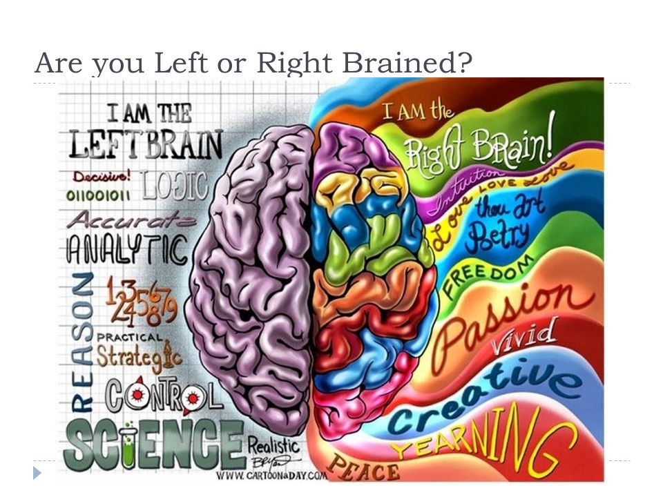 Are you Left or Right Brained