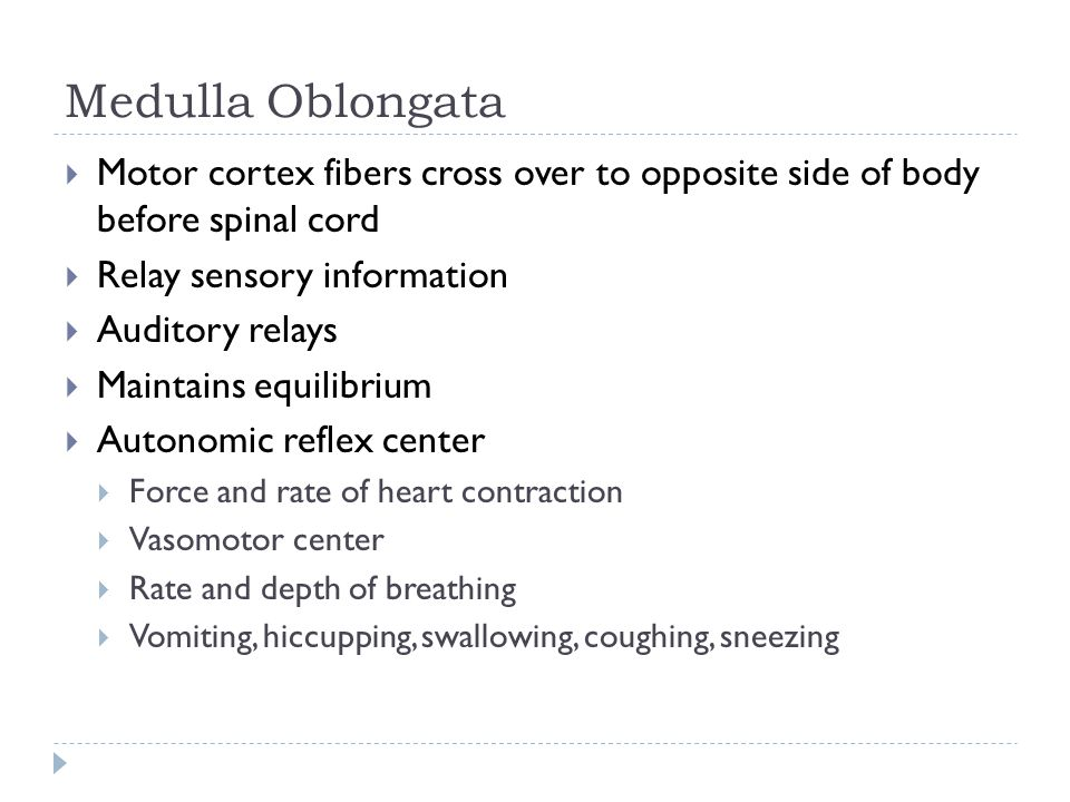 Medulla Oblongata  Motor cortex fibers cross over to opposite side of body before spinal cord  Relay sensory information  Auditory relays  Maintains equilibrium  Autonomic reflex center  Force and rate of heart contraction  Vasomotor center  Rate and depth of breathing  Vomiting, hiccupping, swallowing, coughing, sneezing