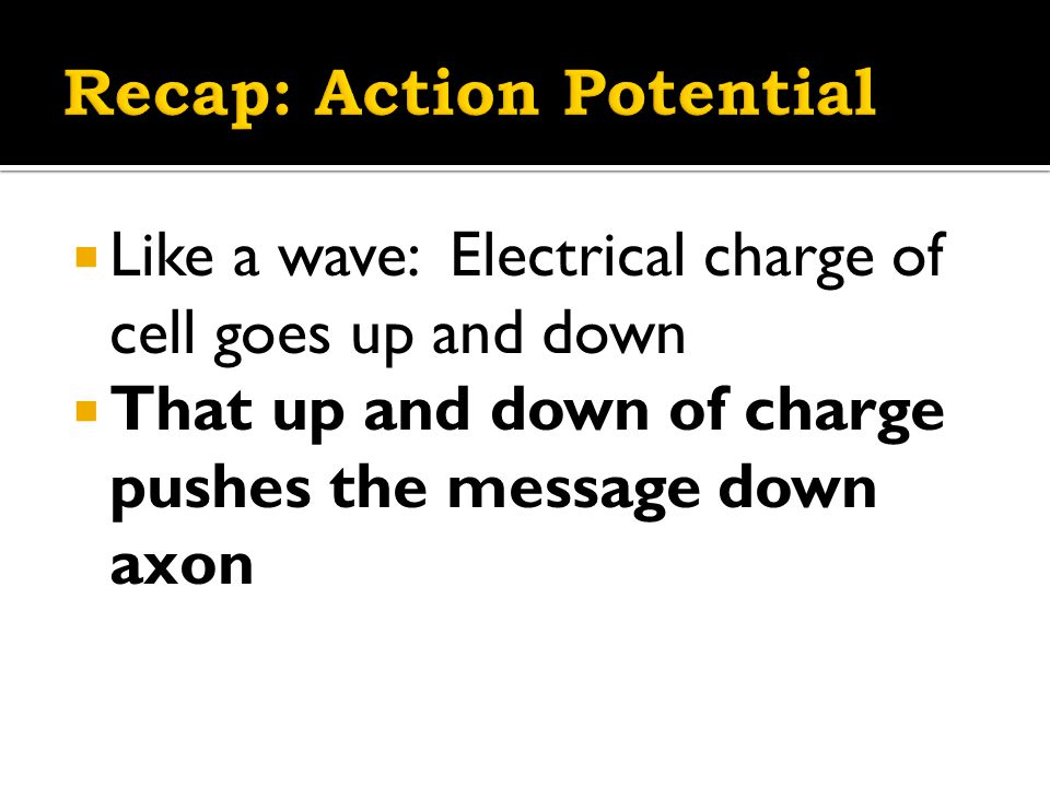  Like a wave: Electrical charge of cell goes up and down  That up and down of charge pushes the message down axon