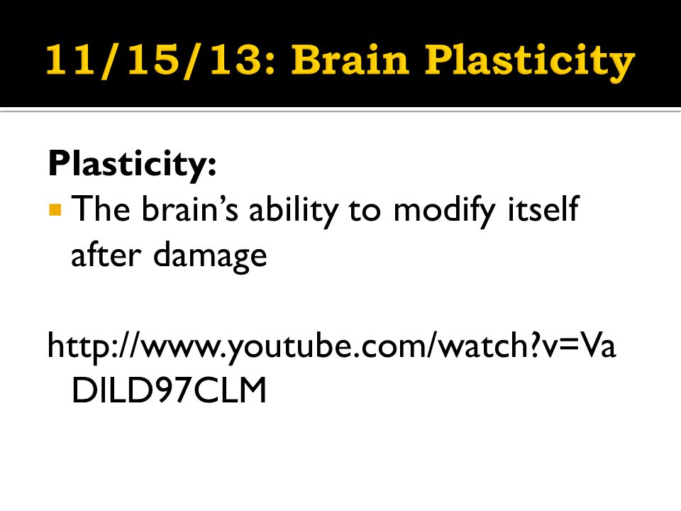 Plasticity:  The brain's ability to modify itself after damage http://www.youtube.com/watch v=Va DlLD97CLM