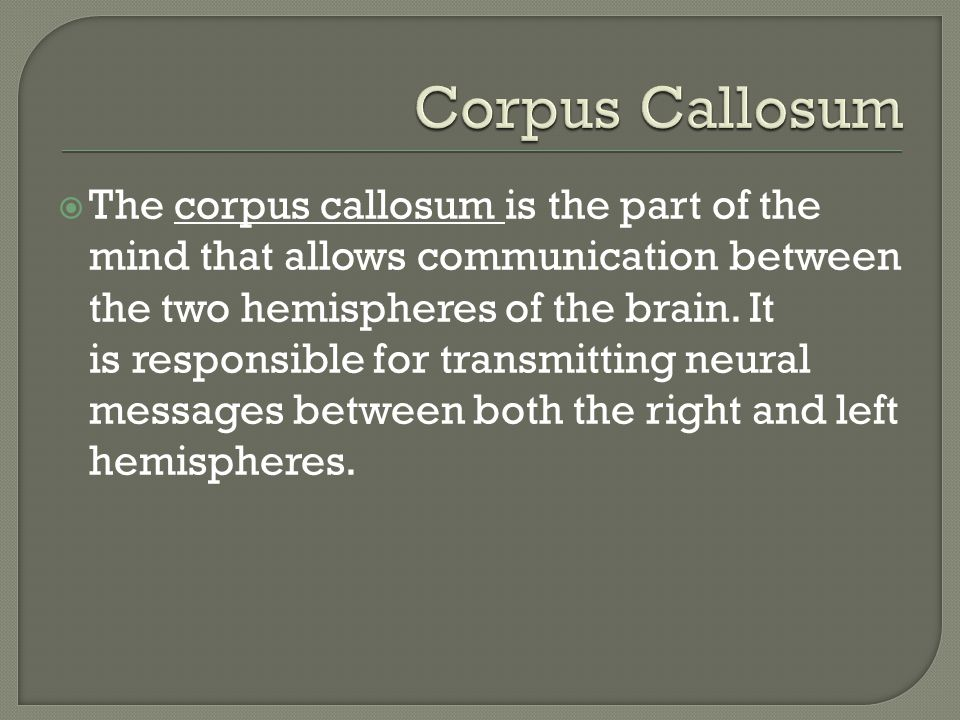 The corpus callosum is the part of the mind that allows communication between the two hemispheres of the brain.
