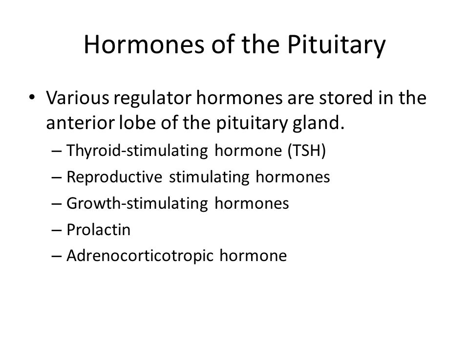 Hormones of the Pituitary Various regulator hormones are stored in the anterior lobe of the pituitary gland. – Thyroid-stimulating hormone (TSH) – Rep