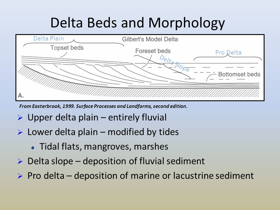 Delta Beds and Morphology From Easterbrook, 1999. Surface Processes and Landforms, second edition. Delta Plain Pro Delta Delta Slope  Upper delta pla