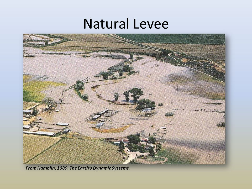 Natural Levee From Hamblin, 1989. The Earth's Dynamic Systems.