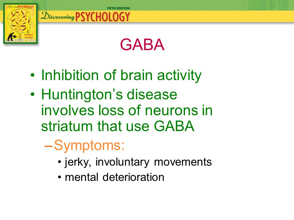 Inhibition of brain activity Huntington's disease involves loss of neurons in striatum that use GABA –Symptoms: jerky, involuntary movements mental deterioration GABA
