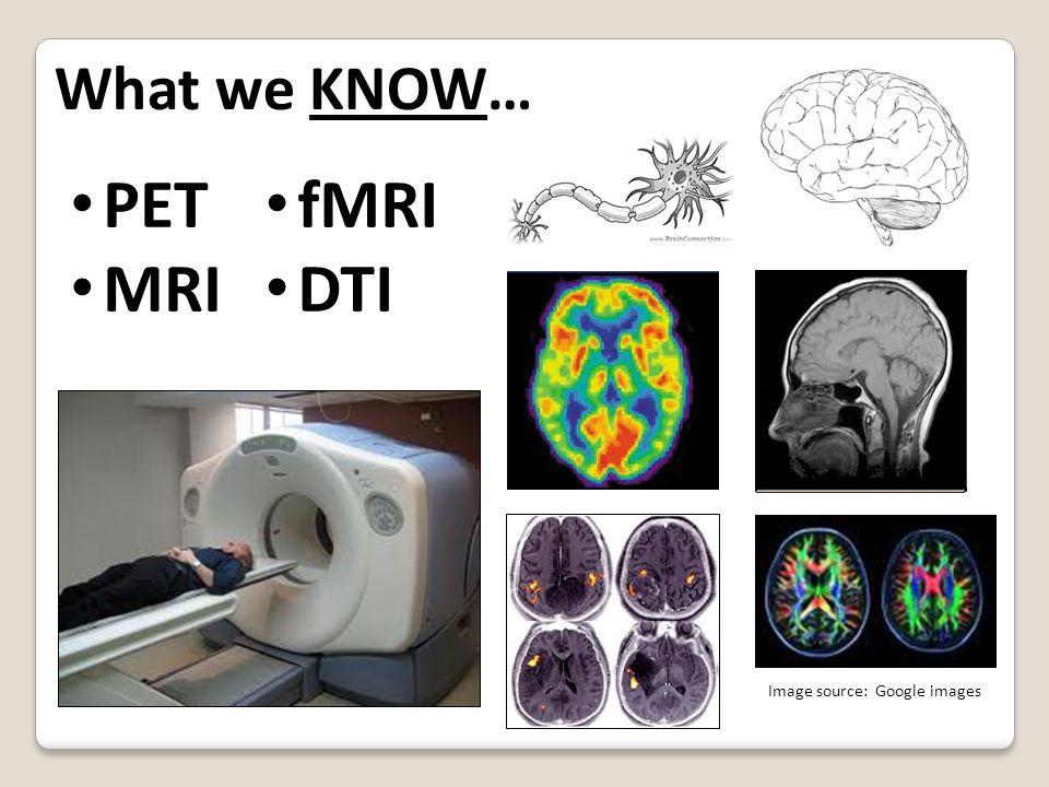 Risk-TakingThe Adolescent Brain: Image source: Google images, 2011 Scientific American Mind: Dec.