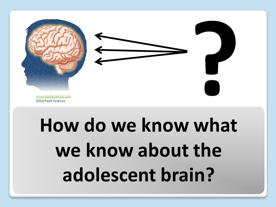 How do we know what we know about the adolescent brain www.positscience.com 2010 Posit Science