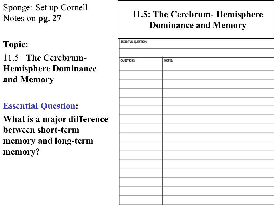 Sponge: Set up Cornell Notes on pg.