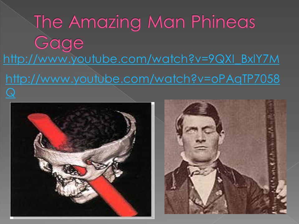 http://www.youtube.com/watch v=9QXI_BxlY7M http://www.youtube.com/watch v=oPAqTP7058 Q