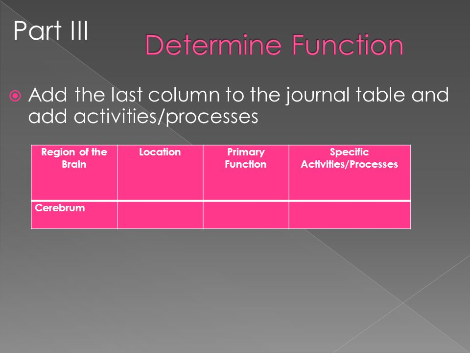  Add the last column to the journal table and add activities/processes Part III Region of the Brain LocationPrimary Function Specific Activities/Processes Cerebrum