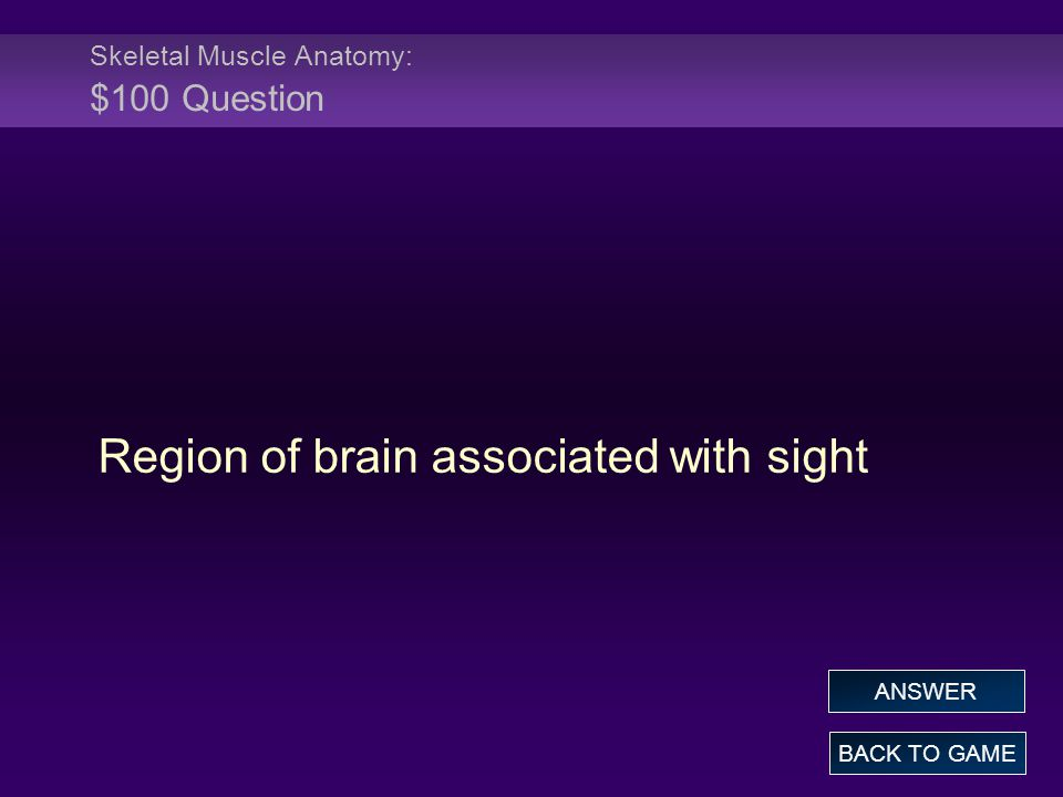 Skeletal Muscle Anatomy: $100 Question Region of brain associated with sight BACK TO GAME ANSWER