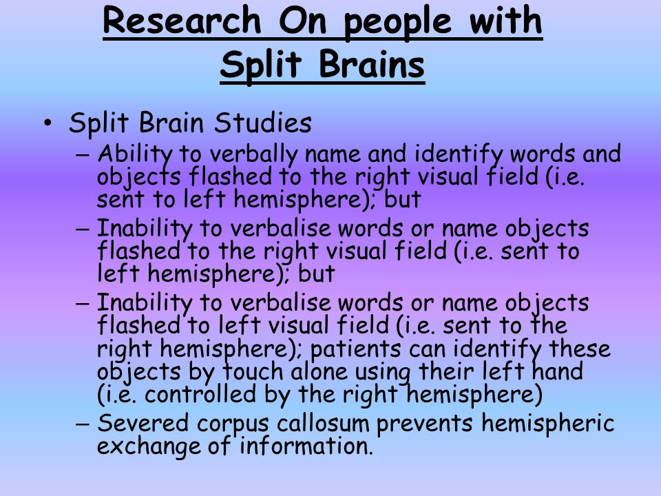 Research On people with Split Brains Split Brain Studies – Ability to verbally name and identify words and objects flashed to the right visual field (i.e.
