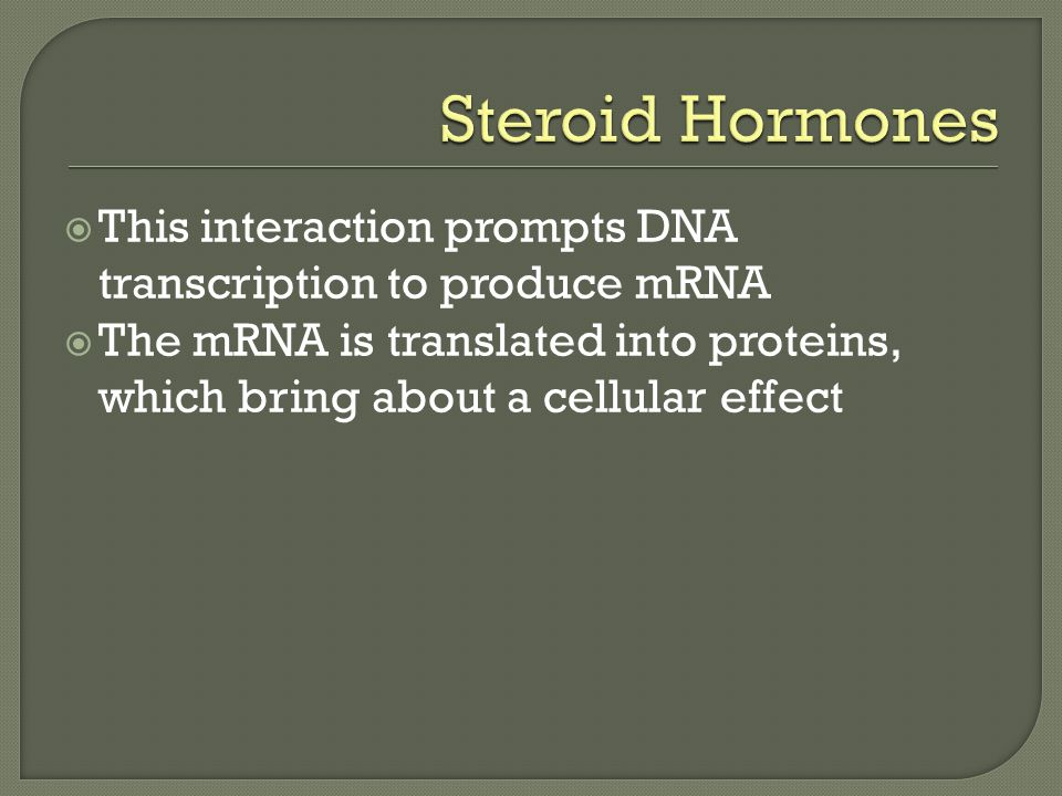  This interaction prompts DNA transcription to produce mRNA  The mRNA is translated into proteins, which bring about a cellular effect