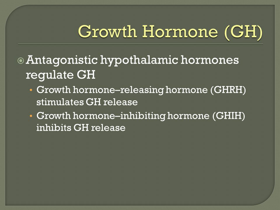  Antagonistic hypothalamic hormones regulate GH Growth hormone–releasing hormone (GHRH) stimulates GH release Growth hormone–inhibiting hormone (GHIH) inhibits GH release
